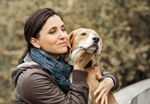 Image Dog Brown haired Beagle young woman