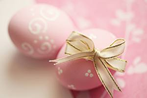 Bilder Ostern Großansicht Eier Schleife Rosa Farbe