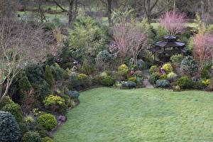 壁纸、、イングランド、ガーデン、春、パゴダ、低木、芝、Walsall Garden、自然