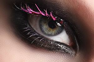 Bilder Augen Hautnah Wimper Schminke