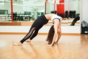 Fonds d'écran Fitness Gymnastique Aux cheveux bruns Activité physique Jambe Main Filles Sport
