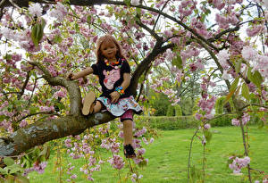 Wallpaper Spring Flowering trees Doll Little girls Branches Grugapark Essen Nature