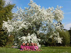 Pictures Germany Parks Spring Flowering trees Doll Little girls Grass Grugapark Essen Nature