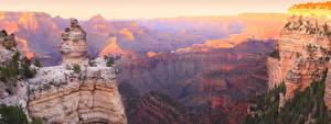 Bilder Grand Canyon Park USA Park Berg Felsen