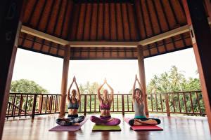 Bilder Lotussitz Drei 3 Joga Sitzend Hand Körperliche Aktivität Mädchens
