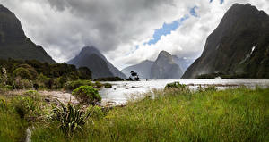Wallpaper New Zealand Park Mountain Lake Clouds Grass Milford Sound Fiordland National Park Nature