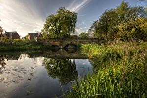 Picture United Kingdom River Bridges Trees Grass Barlaston Nature