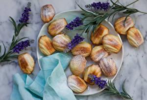 Hintergrundbilder Backware Lavendel Teller Lebensmittel