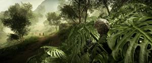 Wallpaper Battlefield 4 Sniper rifle Snipers Camouflage Games 3D_Graphics