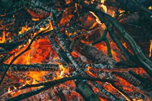 Photo Closeup Fire Bonfire Branches Smoldering coals
