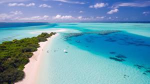 Photo Coast Maldives Sea Beach Horizon Nature