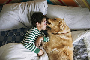 Wallpapers Dog Boys Sleep Two Tongue Pretty Pillows Children Animals