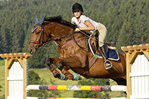 Photo Equestrian sport  Horses Jump Sport Girls