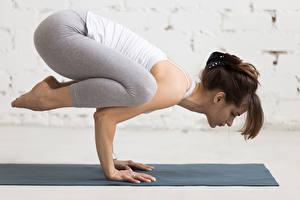 Bilder Fitness Braune Haare Körperliche Aktivität Hand Yoga Mädchens Sport