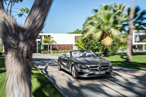 Фотография Mercedes-Benz Кабриолета Серые Едущий S-Class, 2015, S 500, A217 авто