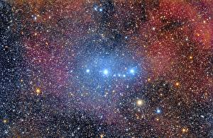 Bilder Stern Nebelflecke in Kosmos Sh2-264 Weltraum