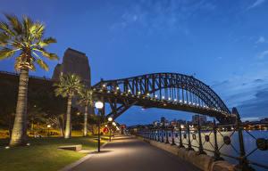 Hintergrundbilder Australien Brücken Abend Flusse Sydney Palmengewächse Straßenlaterne Zaun Waterfront