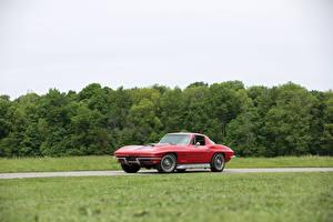 Bilder Chevrolet Retro Rot 1967 Corvette Sting Ray L68 427-400 HP Autos