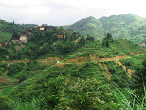 Sfondi desktop Cina Campo agricolo Edificio Montagna Longsheng Pingan Village Natura