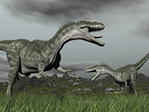 Wallpapers Dinosaurs Two Grass Animals 3D_Graphics