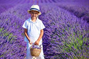 Desktop hintergrundbilder Acker Lavendel Jungen Lächeln Weidenkorb Der Hut Kinder