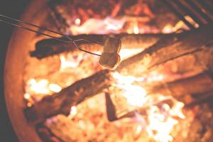 Pictures Fire Bonfire Marshmallow Food