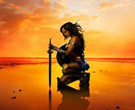 Pictures Warriors Batman v Superman: Dawn of Justice Wonder Woman hero Gal Gadot Swords Beach Girls Celebrities