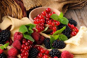 Hintergrundbilder Beere Johannisbeeren Brombeeren Himbeeren Großansicht Lebensmittel