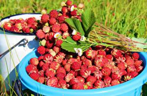 Hintergrundbilder Beere Hügel-Erdbeere Viel das Essen