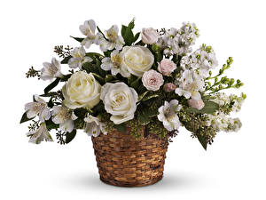 Wallpapers Bouquets Roses Alstroemeria White background Wicker basket White Flowers