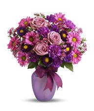 Papel de Parede Desktop Buquês Rosa Asters Dianthus Fundo branco Vaso Laço flor