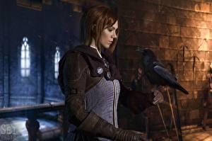 Fotos Krähen Dragon Age Cosplay Braune Haare Leliana, Natali Naboyschikova junge frau