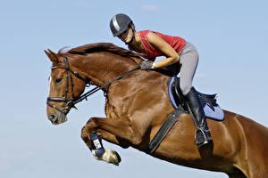 Wallpapers Equestrian sport  Horses Helmet Jump Sport Girls