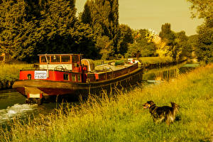 Desktop wallpapers France Dogs Riverboat Canal Grass Nature
