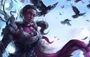 Bilder Guild Wars 2 Krieger Krähen Rüstung computerspiel Mädchens Fantasy