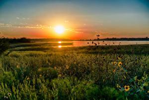Image Lake Sunrises and sunsets USA Texas Grass Nature