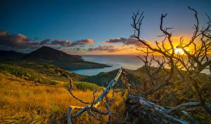 Bilder Tropen Sonnenaufgänge und Sonnenuntergänge Küste Landschaftsfotografie Hawaii Ast Wolke Hügel Natur