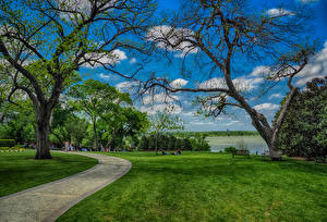 Pictures USA Parks Texas Lawn Trees Dallas Nature