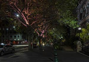 Wallpaper Australia Melbourne Building Street Night time Trees Street lights Cities