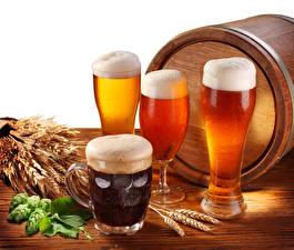 Bilder Bier Fass Echter Hopfen Trinkglas Becher Schaum Ähre Lebensmittel