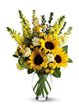 Bilder Sträuße Löwenmäuler Rosen Sonnenblumen Weißer hintergrund Vase