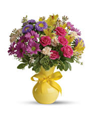Picture Bouquet Roses Asters Alstroemeria White background Vase Bowknot Flowers