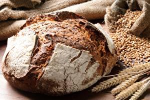 Hintergrundbilder Brot Großansicht Weizen Ähre Getreide das Essen