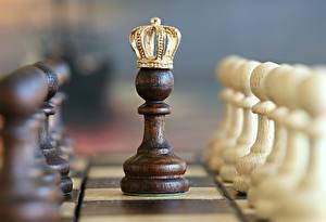Bilder Hautnah Schach Krone