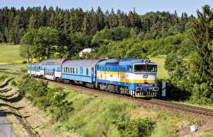 Images Czech Republic Railroads Trains Forests Locomotive Nature
