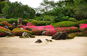 壁纸、、日本、京都市、ガーデン、石、低木、Karesansui、自然