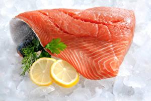 Pictures Seafoods Fish - Food Lemons Salmon Ice Food