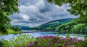 Pictures United Kingdom Scenery Parks River Bridges Forest Hill HDRI Peak District National Park Nature