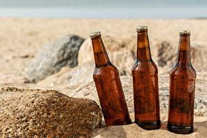 Photo Beer Stones Bottle Three 3 Sand Food