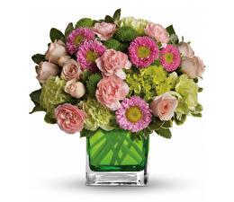 Papel de Parede Desktop Buquê Asters Rosa Dianthus Fundo branco Vaso Flores
